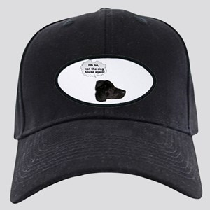 """oh no """"not the dog house again"""" Black Cap"""