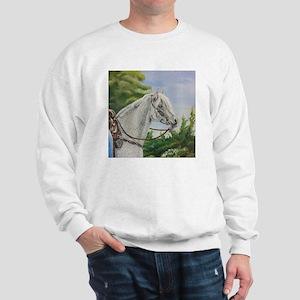 Winter Moon Enlightenment Sweatshirt