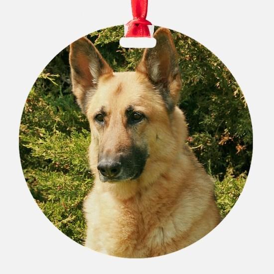 Jessie Ornament