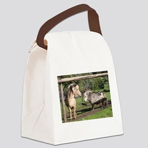 Miniature pet ponies in farm padd Canvas Lunch Bag