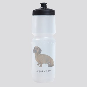 FIN-dachshund-smooth-good.png Sports Bottle