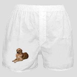 2-FIN-golden-retriever-photo-CROP Boxer Shorts
