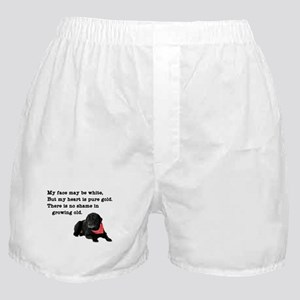 Old Black Lab Boxer Shorts