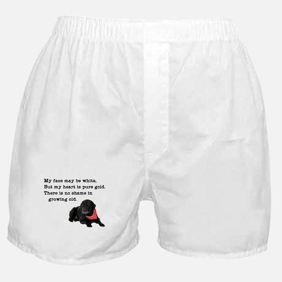 Old Black Lab Boxer Shorts