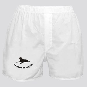 FIN-black-lab-photo.png Boxer Shorts