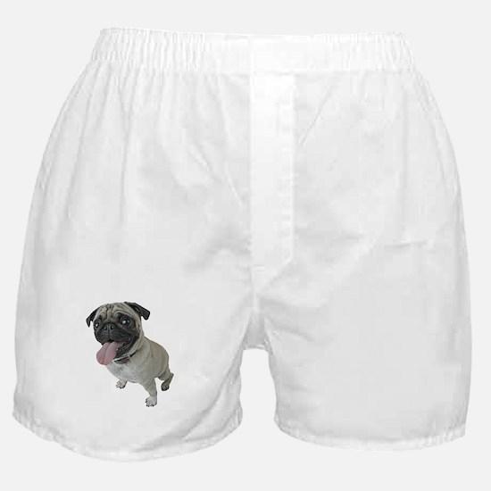 Pug Face Close-Up Boxer Shorts
