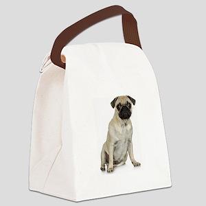FIN-fawn-pug-photo Canvas Lunch Bag