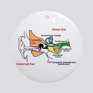 Ear Diagram labeled Round Ornament