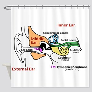 Ear Diagram labeled Shower Curtain