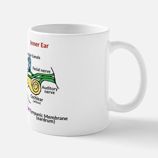 Ear Diagram labeled Mug