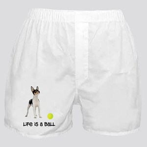 FIN-toy-fox-terrier-life Boxer Shorts