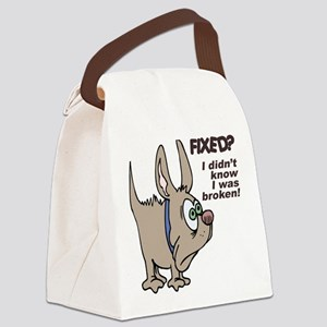 FIN-dog-fixed-broken Canvas Lunch Bag