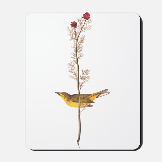 Audubon Selby's Fly Catcher Mousepad