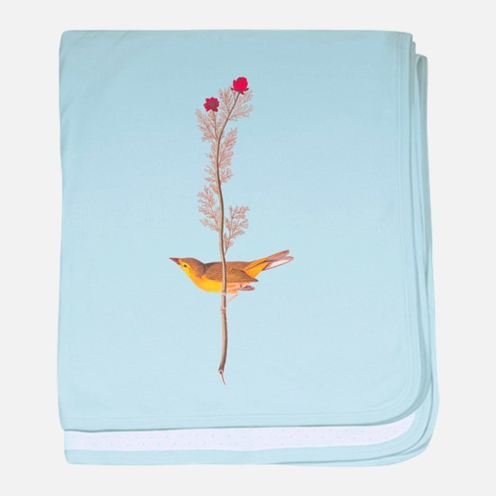 Audubon Selby's Fly Catcher baby blanket