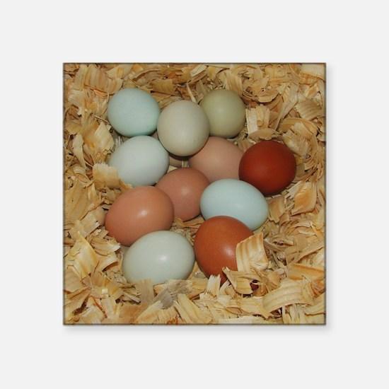 Eggs in a Nest Sticker