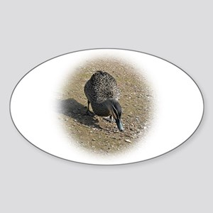 Wood Duck Sticker