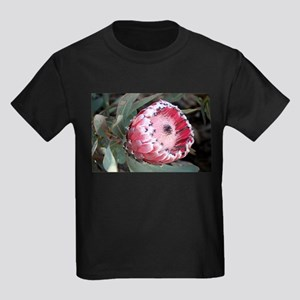 South Africa Protea flower in bloom in gar T-Shirt