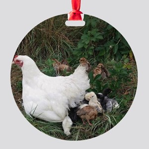Patience and Baby Chicks Round Ornament