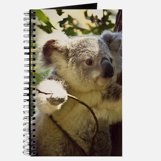 Sweet Baby Koala Journal