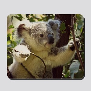 Sweet Baby Koala Mousepad