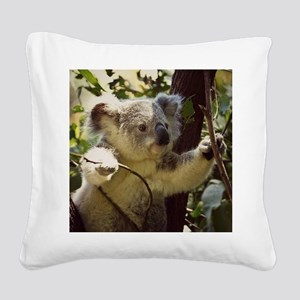 Sweet Baby Koala Square Canvas Pillow