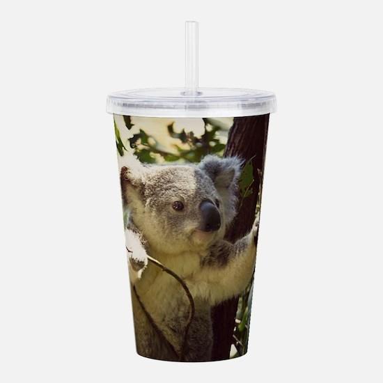 Sweet Baby Koala Acrylic Double-wall Tumbler