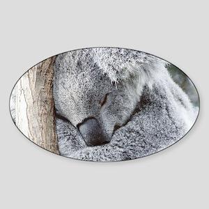 Sleeping Koala baby Sticker