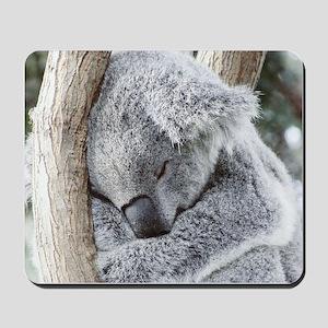 Sleeping Koala baby Mousepad