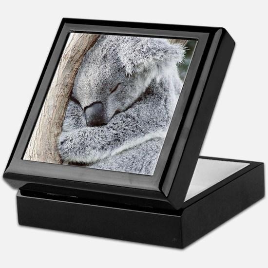 Sleeping Koala baby Keepsake Box