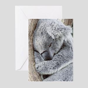 Koala greeting cards cafepress sleeping koala baby greeting cards m4hsunfo
