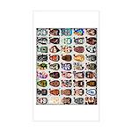 45 Dobbsheads Rectangle Sticker