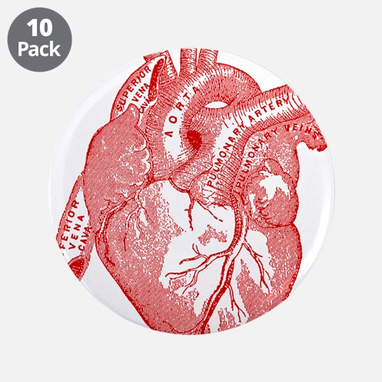"""Anatomical Heart - Red 3.5"""" Button (10 pack)"""