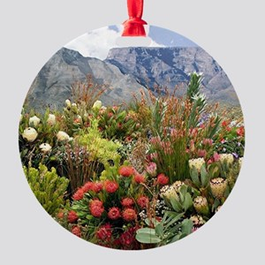 South African flower display in blo Round Ornament