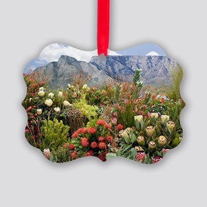 South African flower display in b Picture Ornament