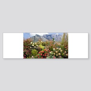 South African flower display in blo Bumper Sticker