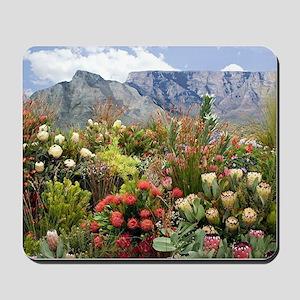 South African flower display in bloom Mousepad