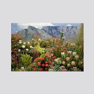 South African flower display in bloom Magnets