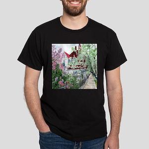 Eureka Springs T-Shirt