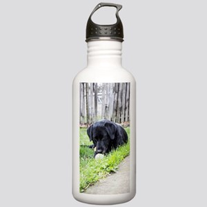 Toy Stainless Water Bottle 1.0L
