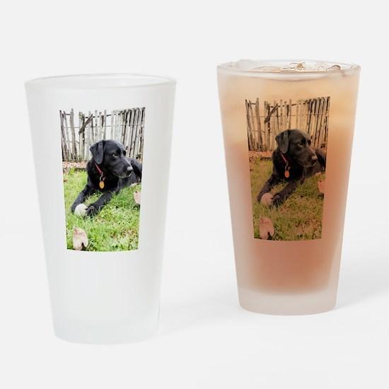 Chewie Drinking Glass