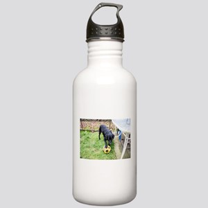 Bring it Stainless Water Bottle 1.0L