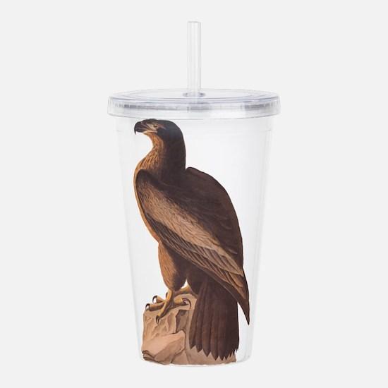 Juvenile Bald Eagle Acrylic Double-wall Tumbler