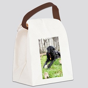 Chewie Canvas Lunch Bag