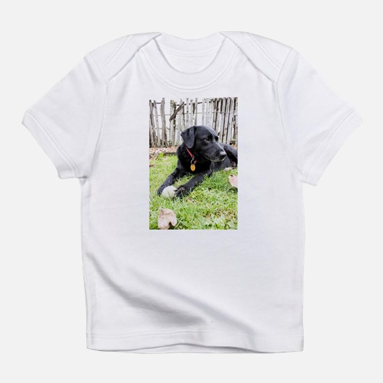 Chewie Infant T-Shirt