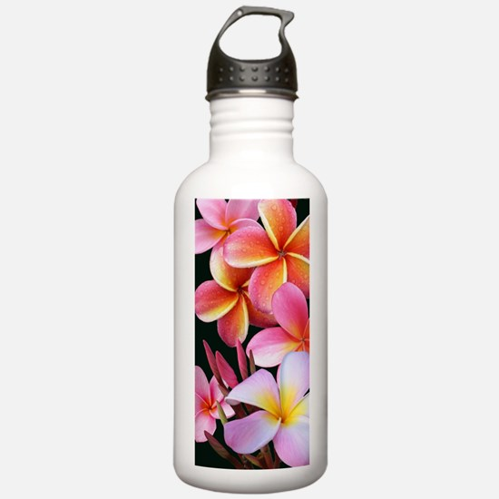 Pink Plumerias Water Bottle