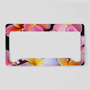 Pink Plumerias License Plate Holder