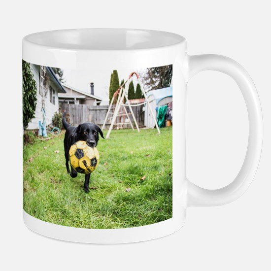 Fetch Mugs
