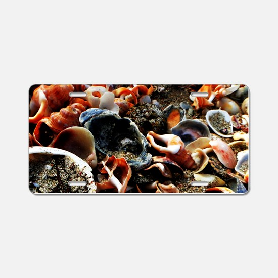 Beach Shells Aluminum License Plate