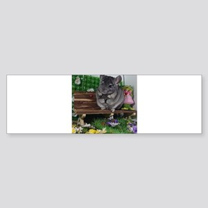 ebony chinchilla Bumper Sticker