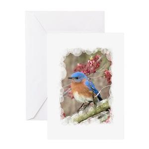 Bluebird stationery cafepress m4hsunfo